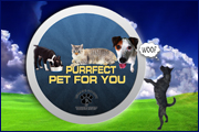 Purfect Pet 4 You Logo