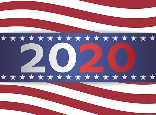 2020 US presidential election banner