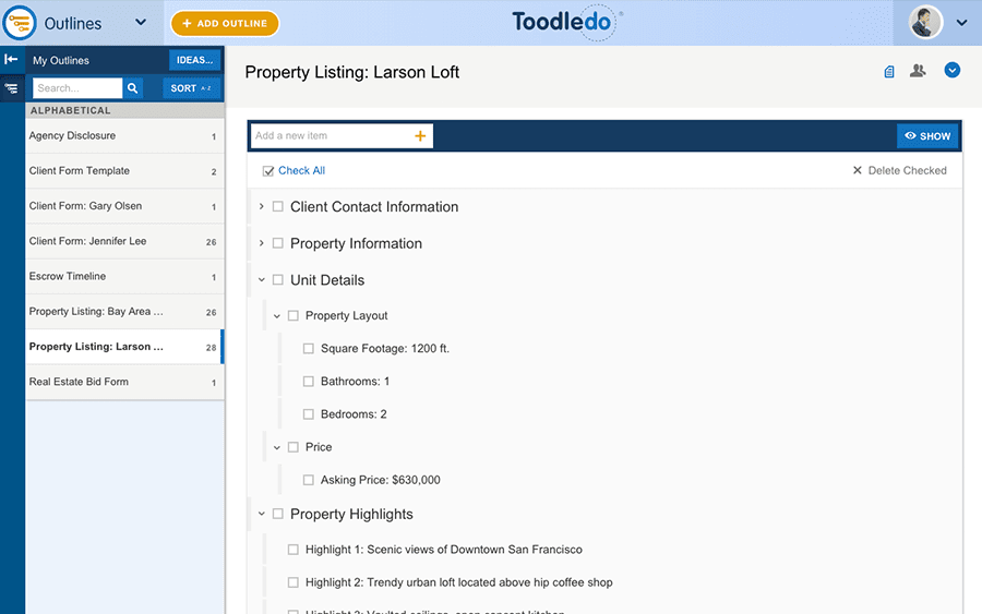Screenshot of a project outline in Toodledo task management software