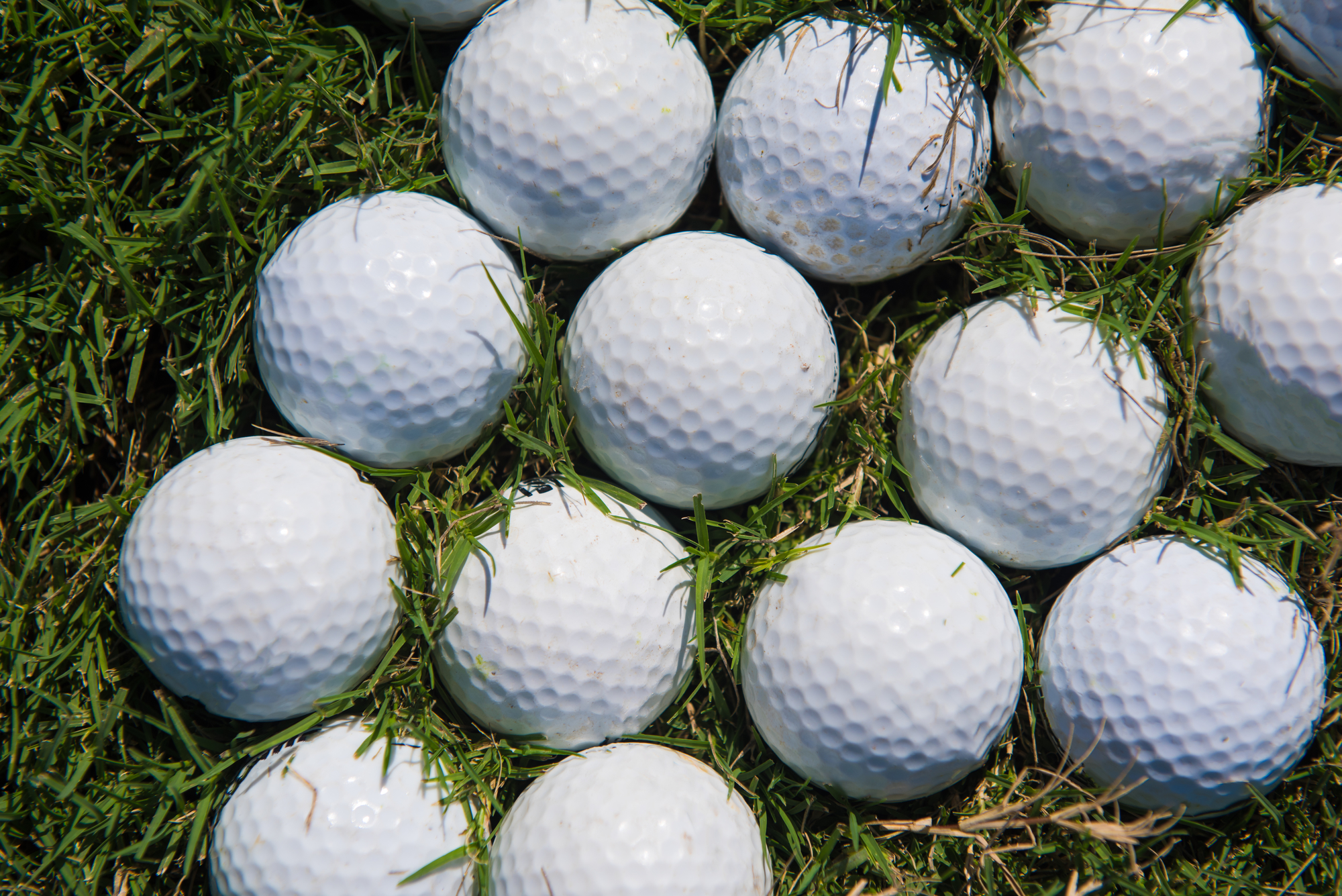 3ec98f24b2110 You re at a Junior golf tournament as a senior in high school. You ve  competed in many tournaments before. You know what your body needs to  perform ...