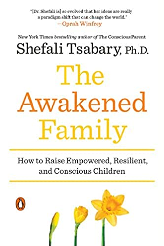 The Awakened Family Book Cover