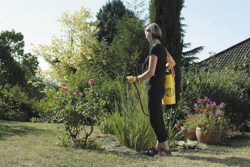 Elyte 8 Pro Plant Care