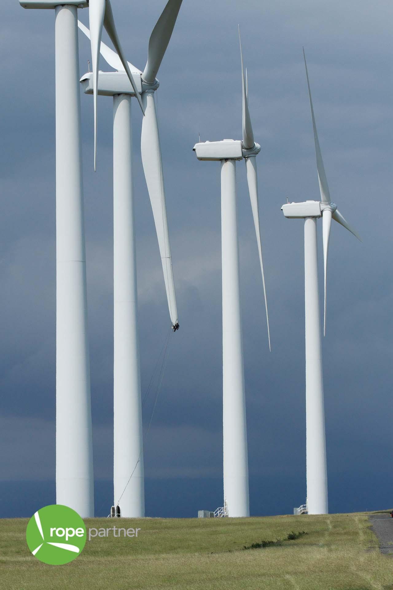 Wind Turbines on the Hawaii Coastline