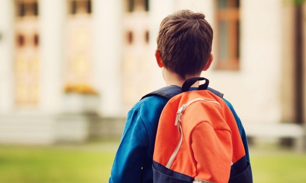 Семейное обучение как организовать