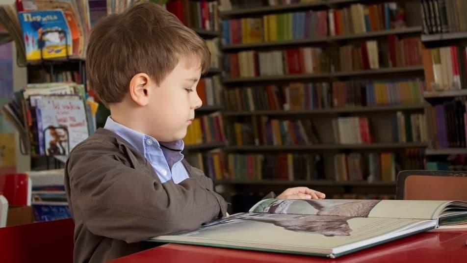 Из чего состоит учебная нагрузка в начальной школе
