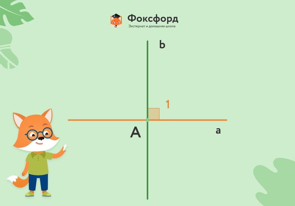 Две перпендикулярные прямые