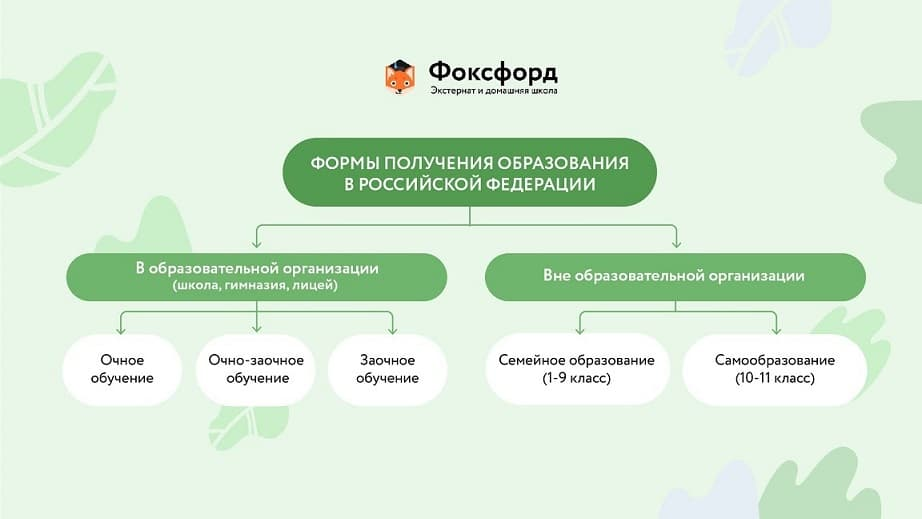 Рекомендации по выбору формы образования