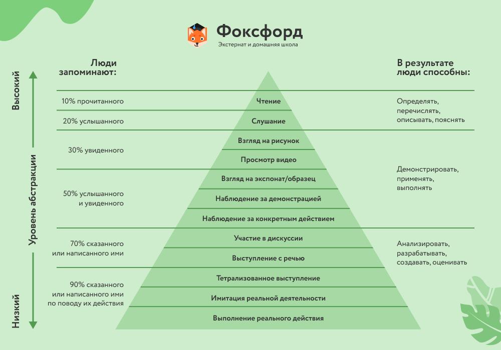 Конус Дейла - пирамида обучения