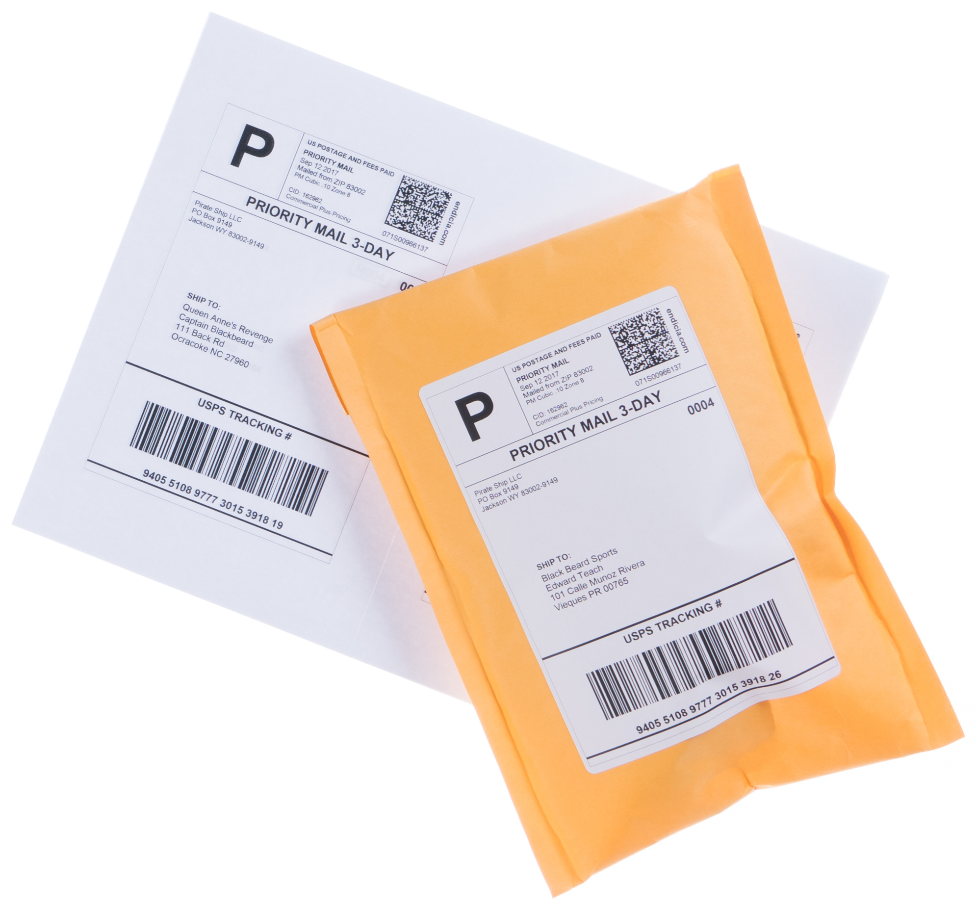 Priority Mail Cubic softpack shipping labels and envelope