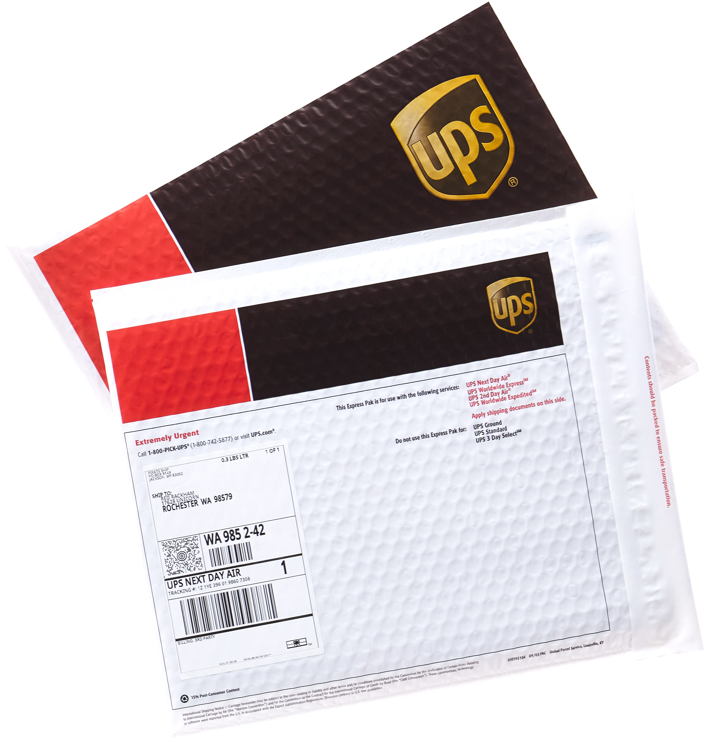 UPS Express Paks with Next Day Air shipping labels