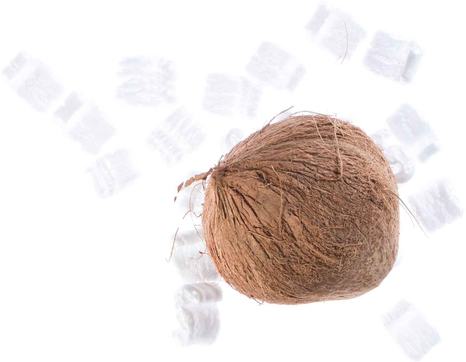 A coconut with shipping material
