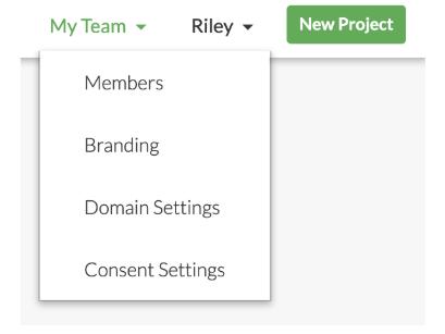 "The ""My Team"" Dropdown menu."
