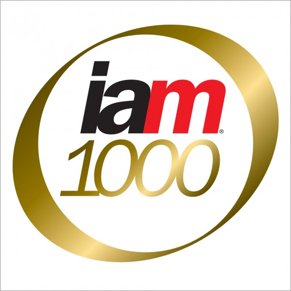 Patent 1000 Recommended Individual 2019