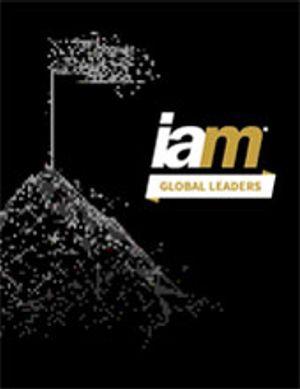IAM Global Leader 2021