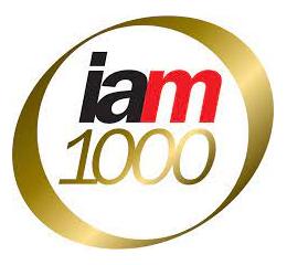 IAM Patent 1000´s 2021 - Brazil
