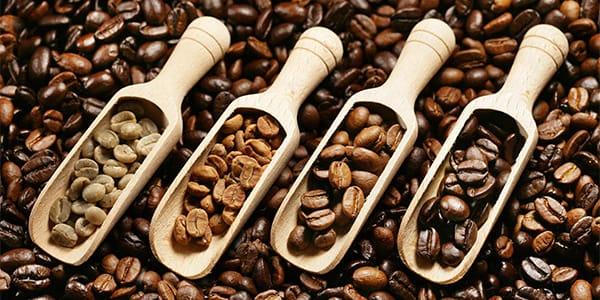 Зеленый кофе, светлая обжарка, средняя и темная как выглядит