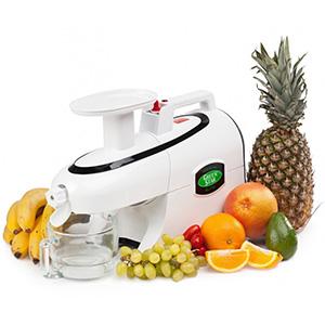 приготовление специй, фруктового щербета и мороженого, паштета, ореховой пасты и молока, живых каш, детского питания