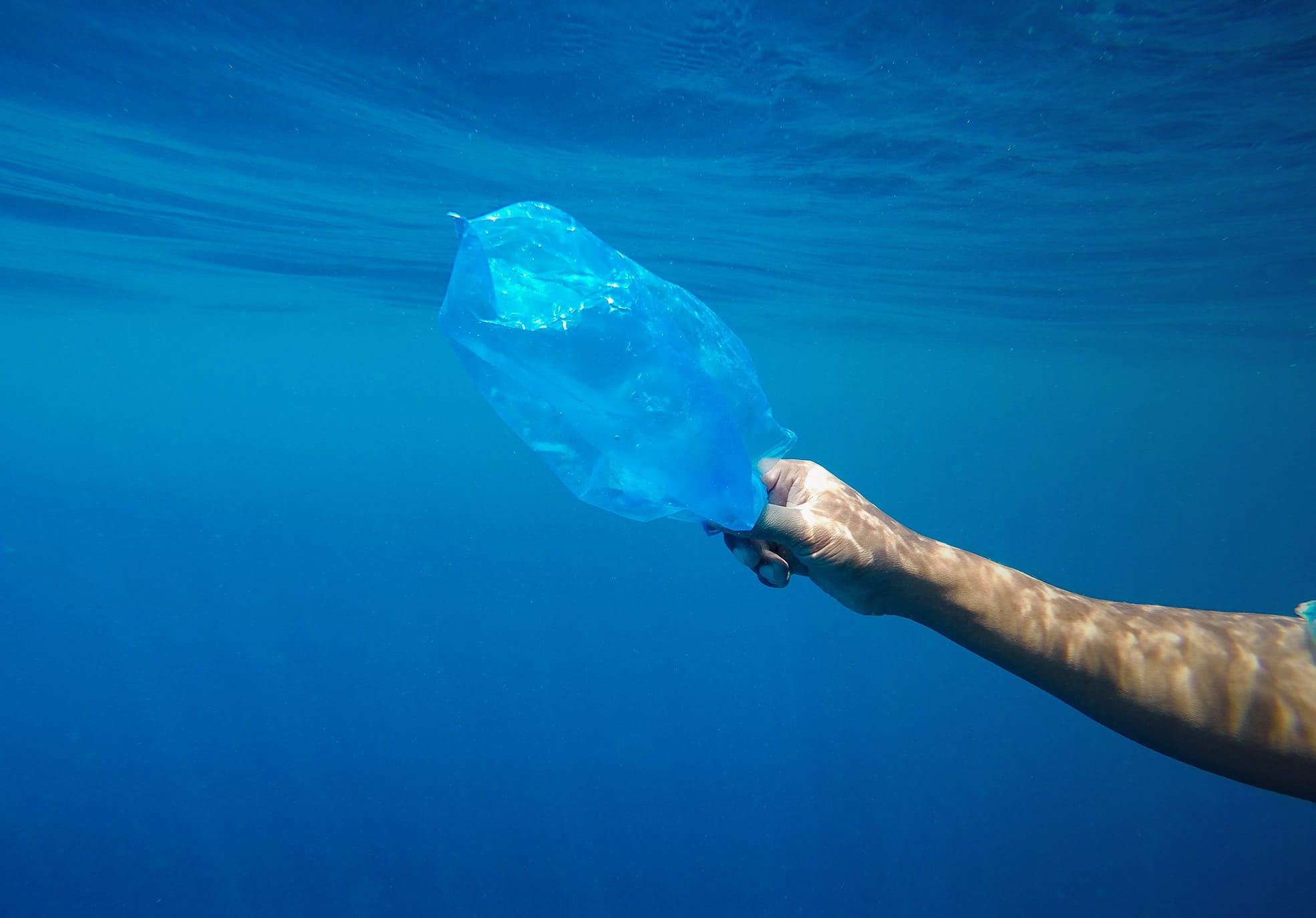 Man underwater grabbing a plastic bag cleaning the ocean of plastic pollution stock photograph by Ahmed Areef EyeEm