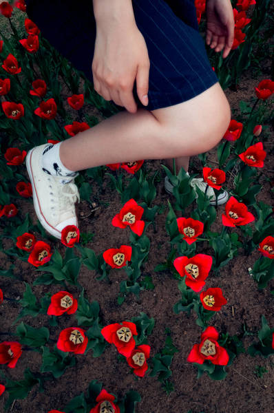 Low Section Of Woman Amidst Red Flowers On Field