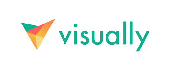 visuall logo