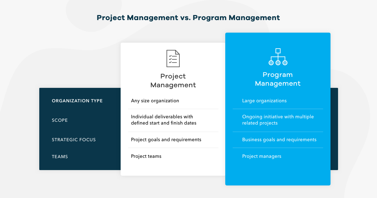program management vs. project management