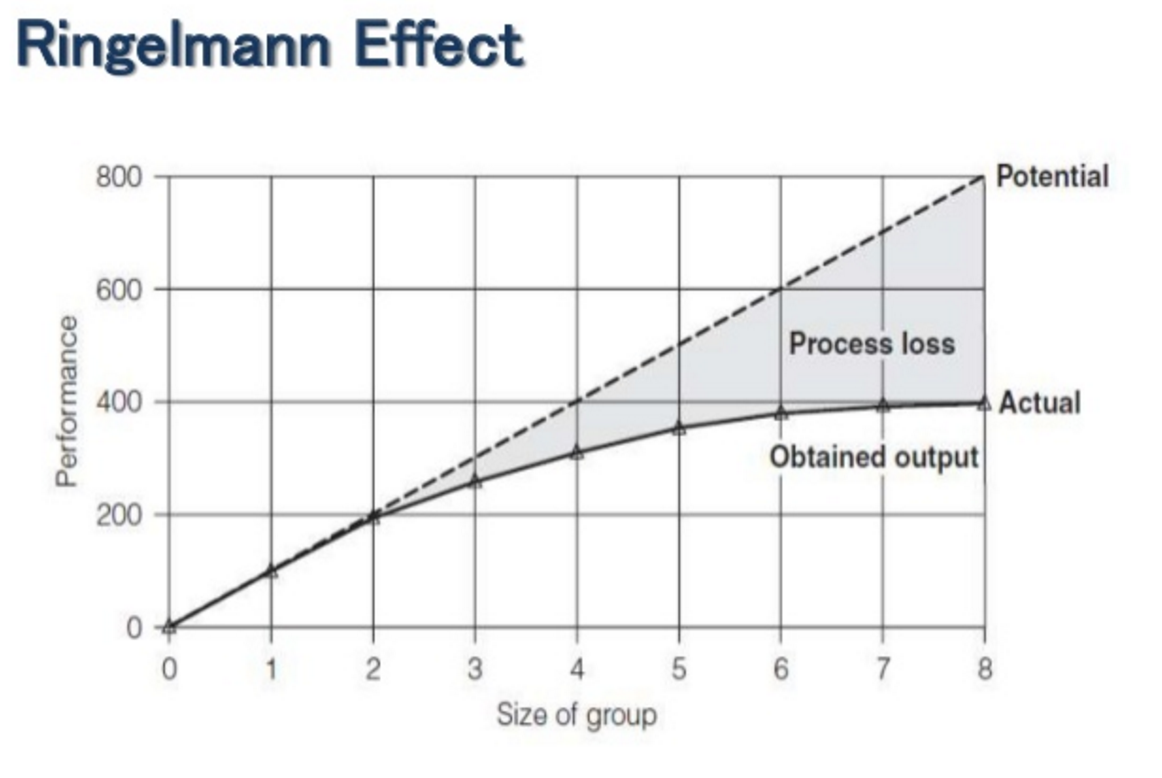 ringelmann effect for productivity
