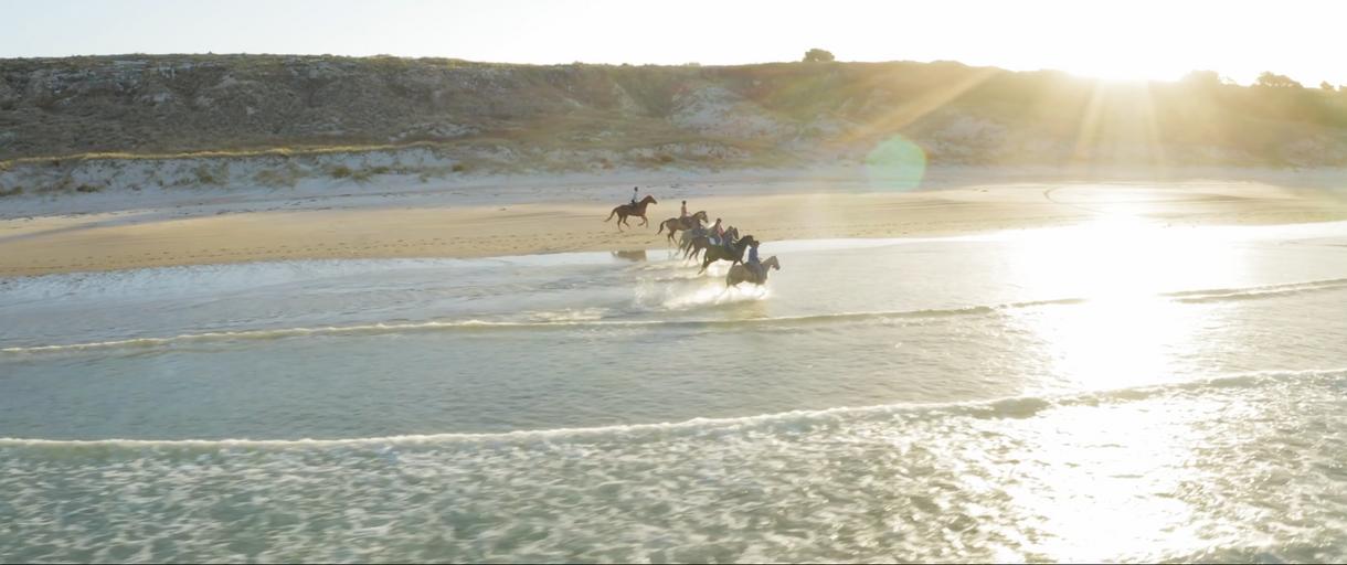 Dromgool Horsemanship - Brian Mead