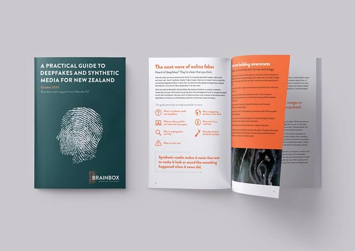 Brainbox Institute document design - David White