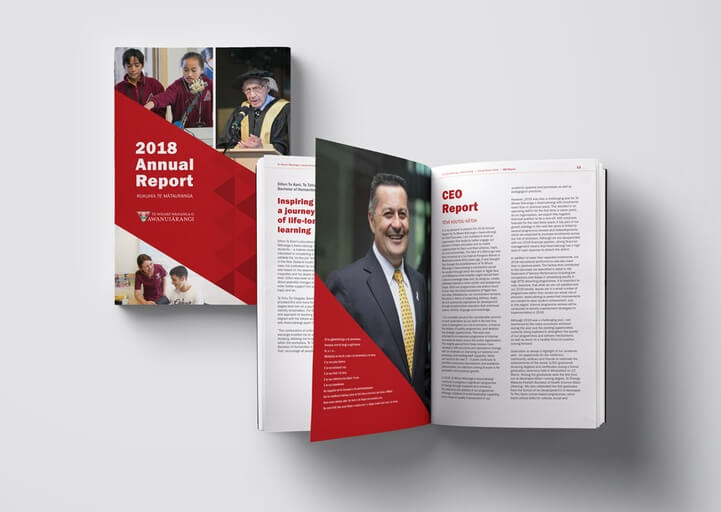 Annual Report & Print Collateral - Pam Cheney