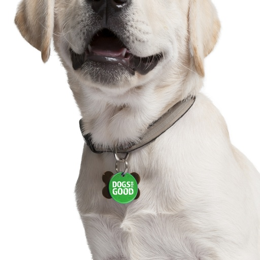 Dogs for Good - Emily Picot