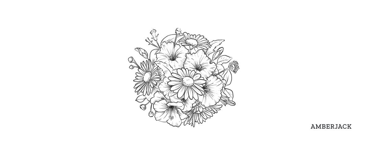 Amber jack package illustrations - Loic Yearbury
