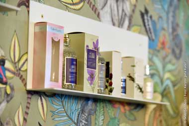 Boundless beauty: Flaconi presents delivery success story at Seven Senders customer evening
