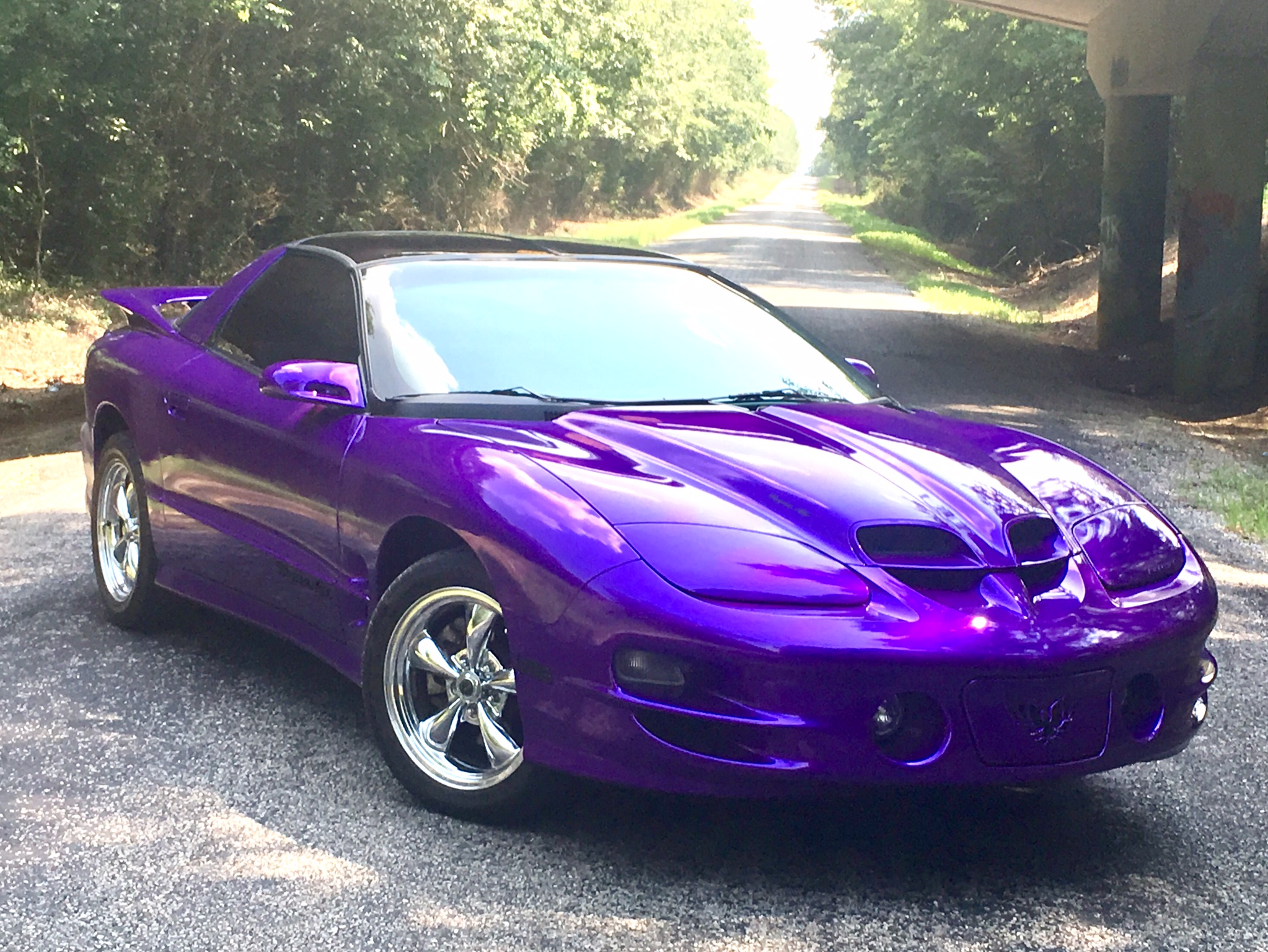 purple 2002 trans am
