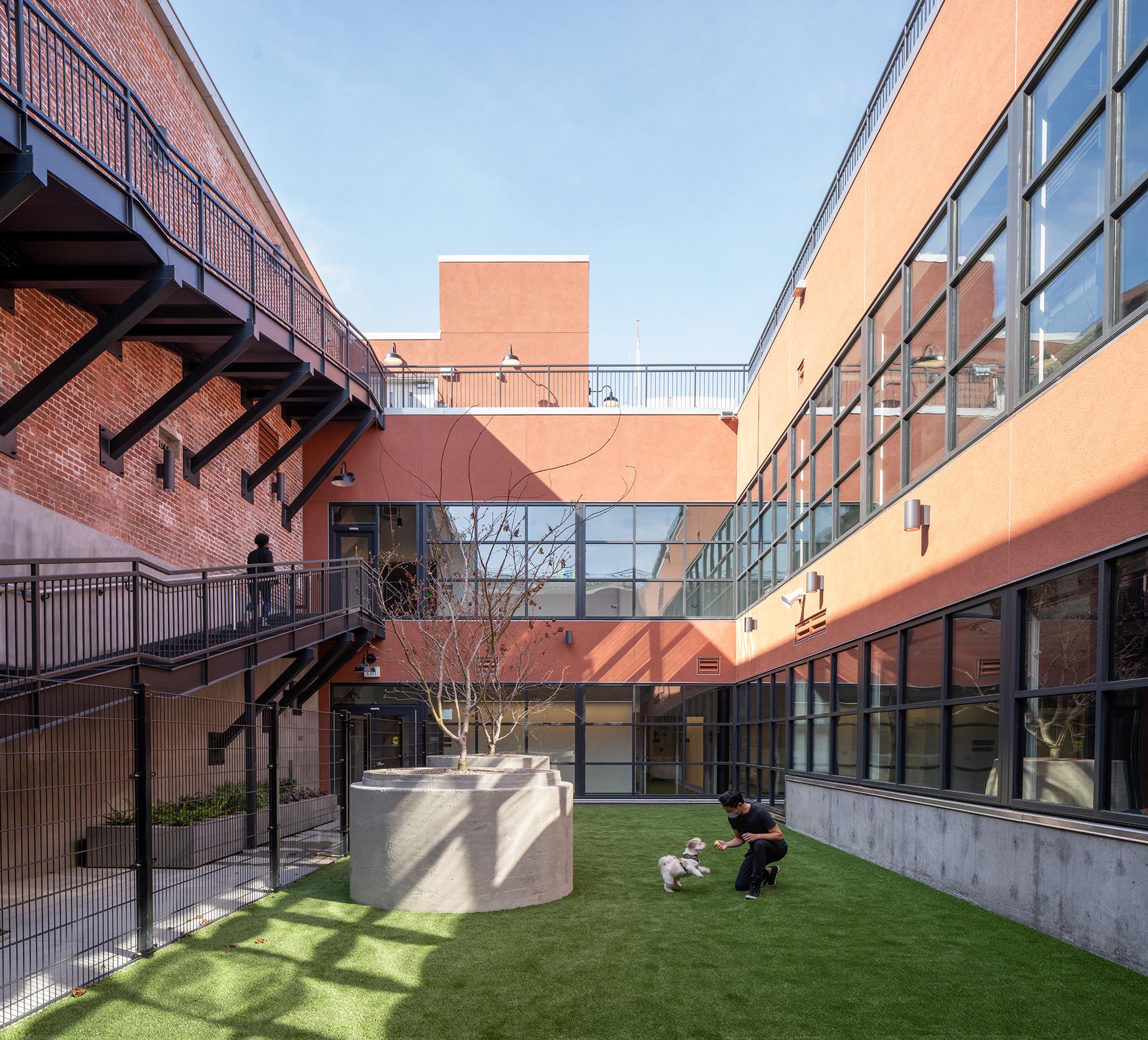 SFACCF by Quezada Architecture (Fred Quezada, Cecilia Quezada, Ed Tingley)
