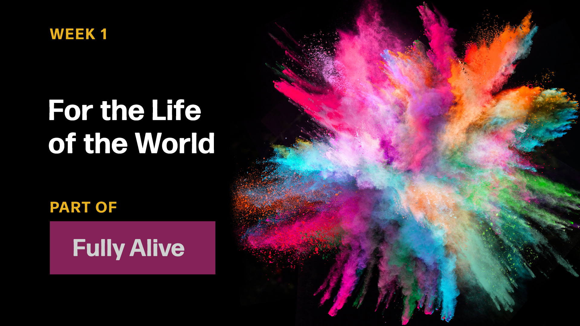 For The Life of the World (Sermon)
