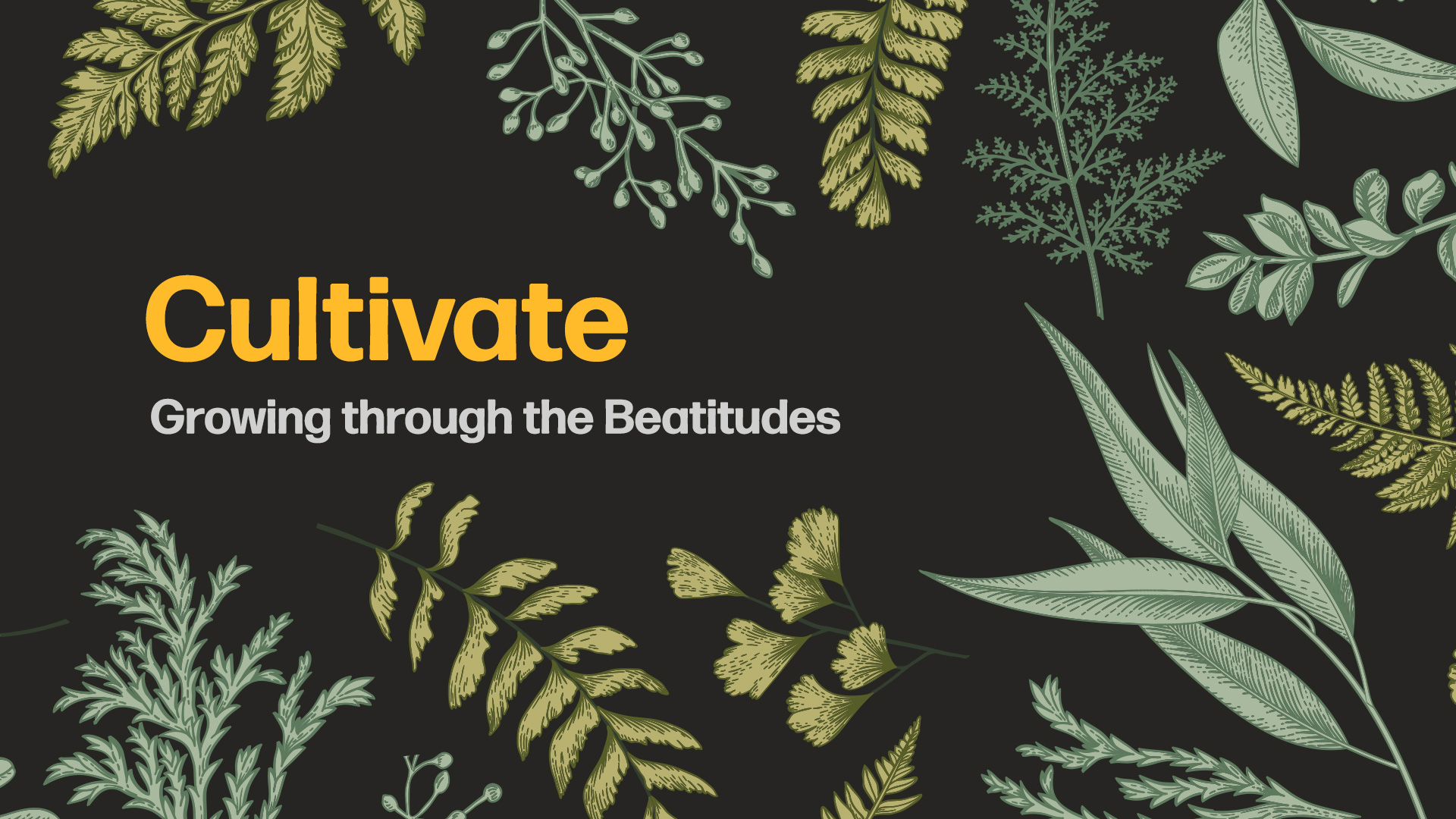Cultivate: Growing Through the Beatitudes - Breaking News