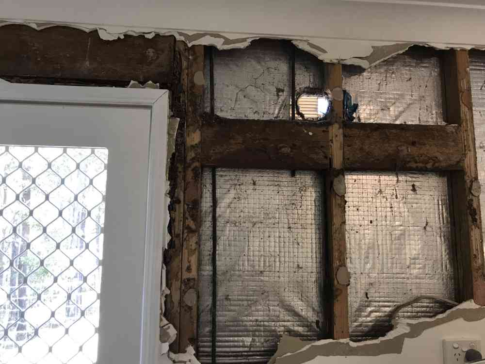 Termite damage to the laundry wall