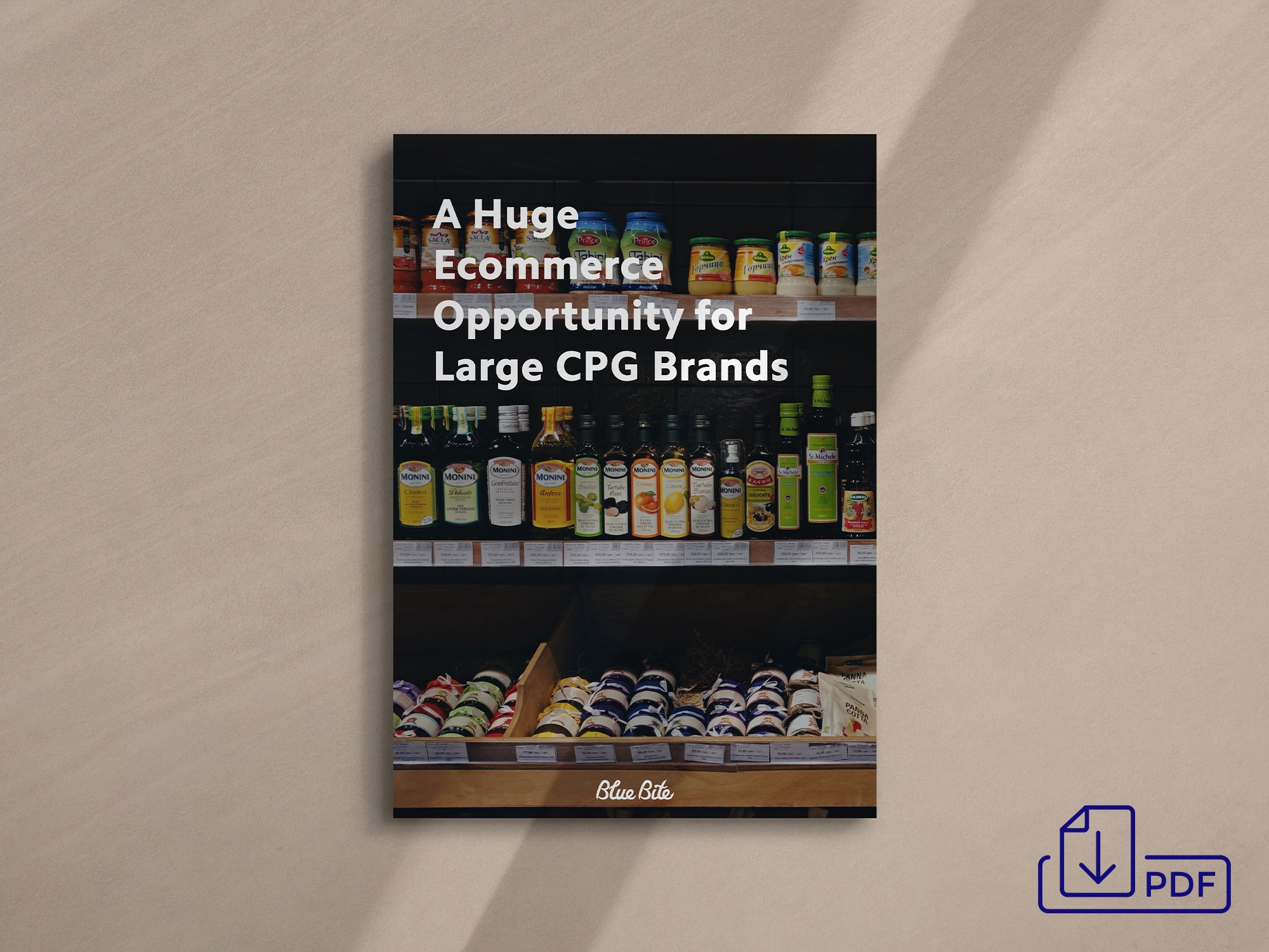 Get the Ecommerce Opportunity for Large CPG Brands PDF