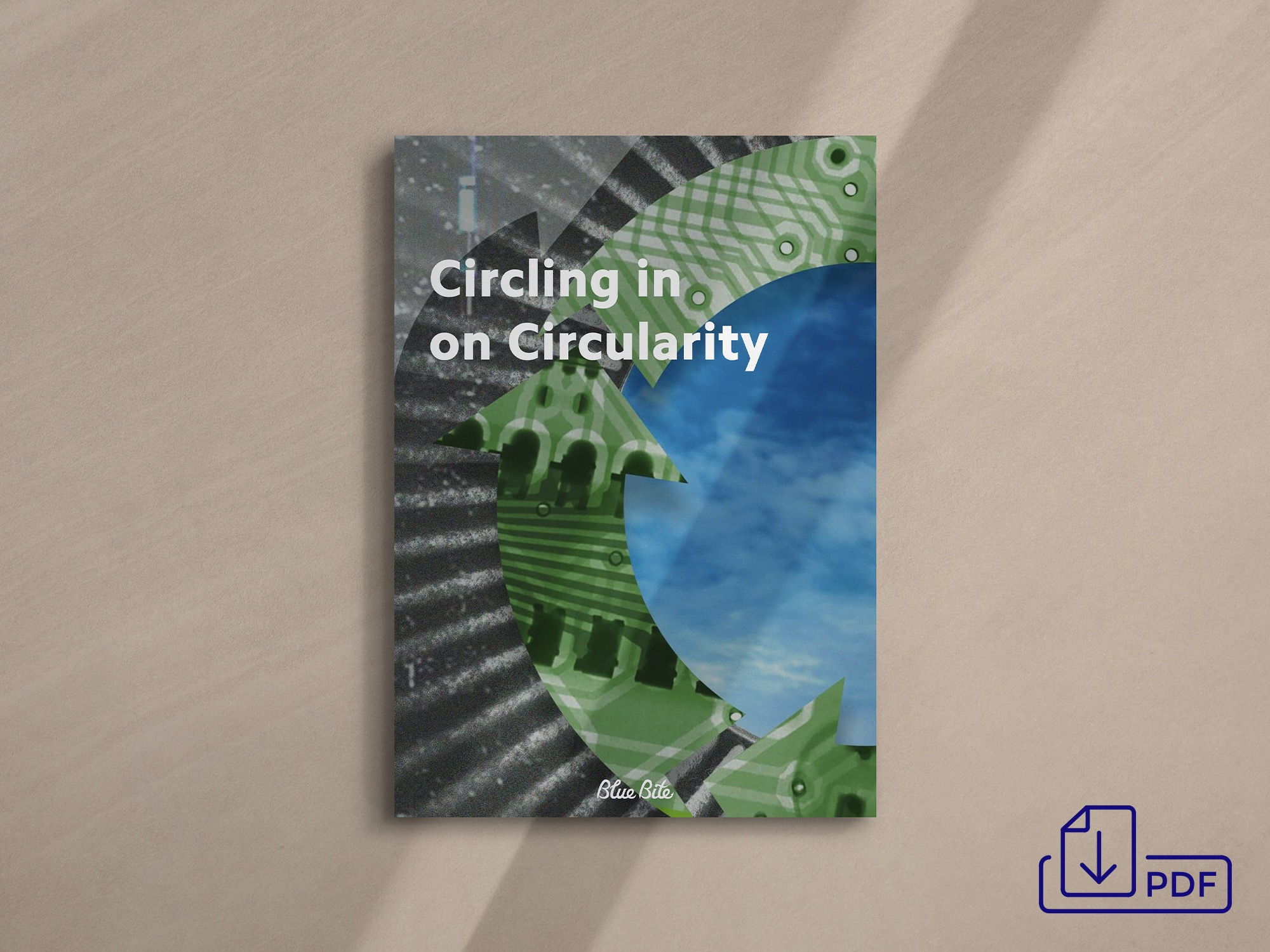 Get the Circling in on Circularity PDF