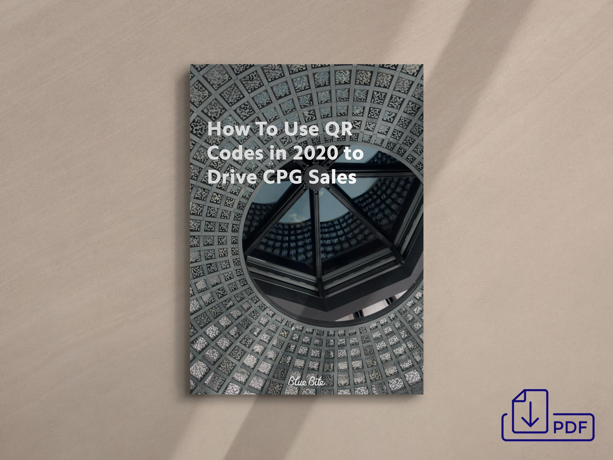 Get the How to Use QR codes in 2020 to Drive CPG Sales