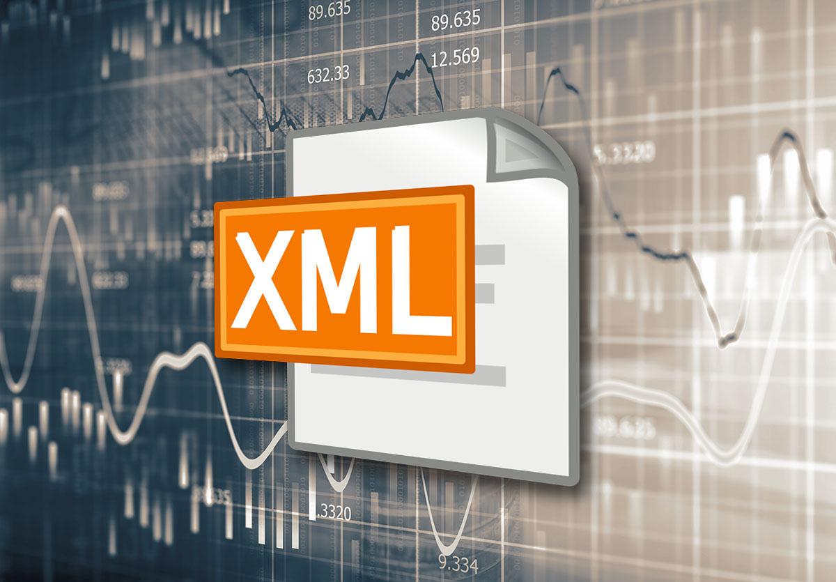 XML logo image