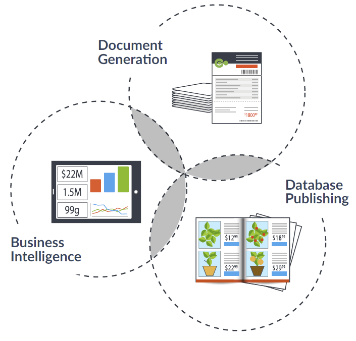 Triple venn diagram showing business intelligence, document generation and database publishing