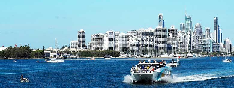 Gold Coast property pest management