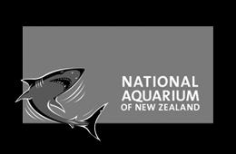 National Aquarium of NZ