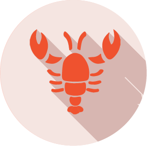 Shellfish: Crab, lobster, prawns, and scampi are crustaceans. shrimp paste, often used in Thai and south-east Asian curries or salads, is an ingredient to look out for.