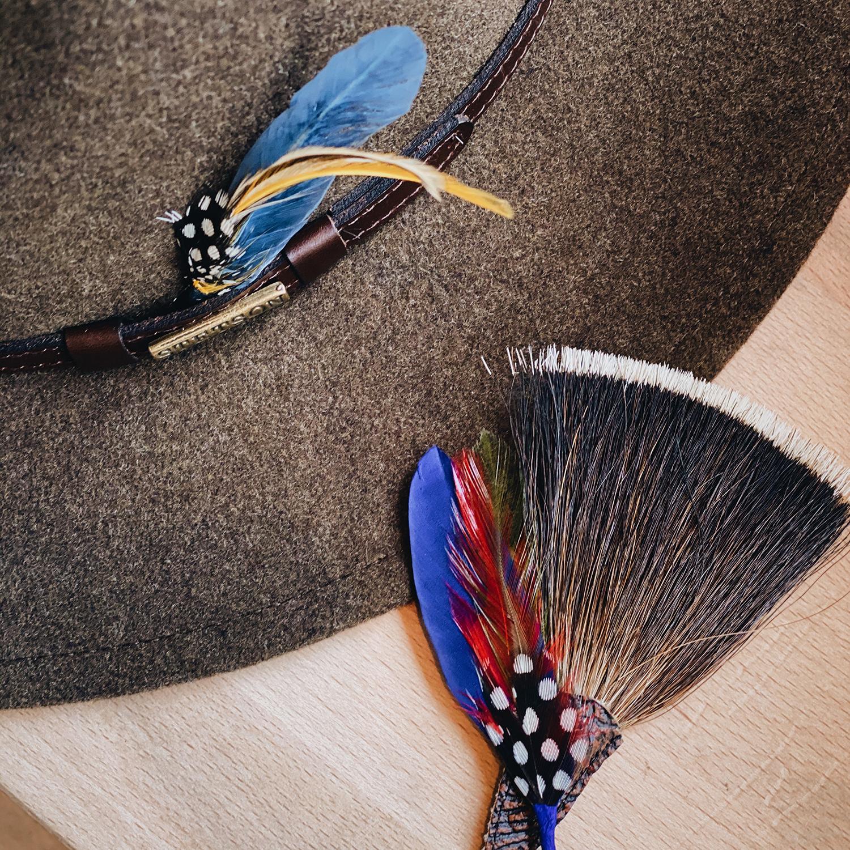 Fjäder i hatten