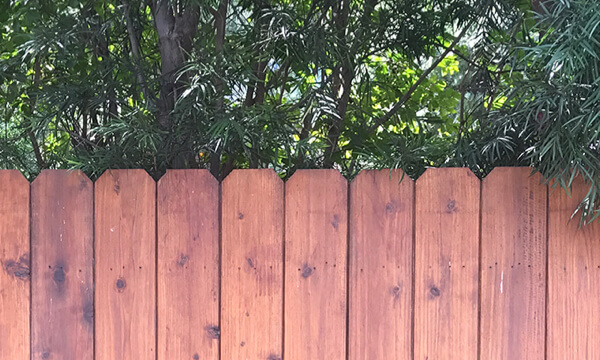 Ergeon 3 Types Of Privacy Fences For Your Yard