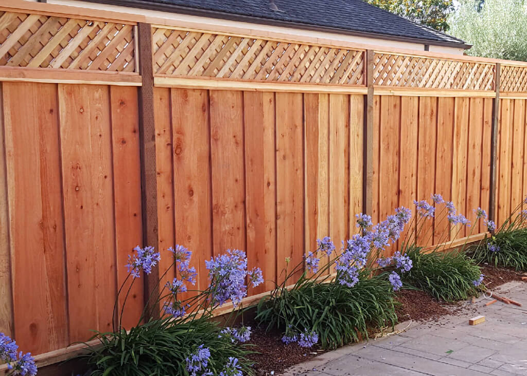 Ergeon How To Choose The Best Type Of Wood For Your Fence