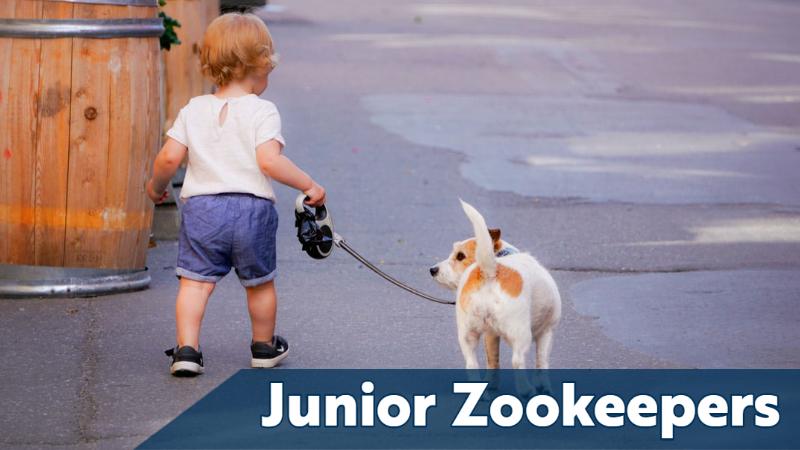Junior Zookeepers