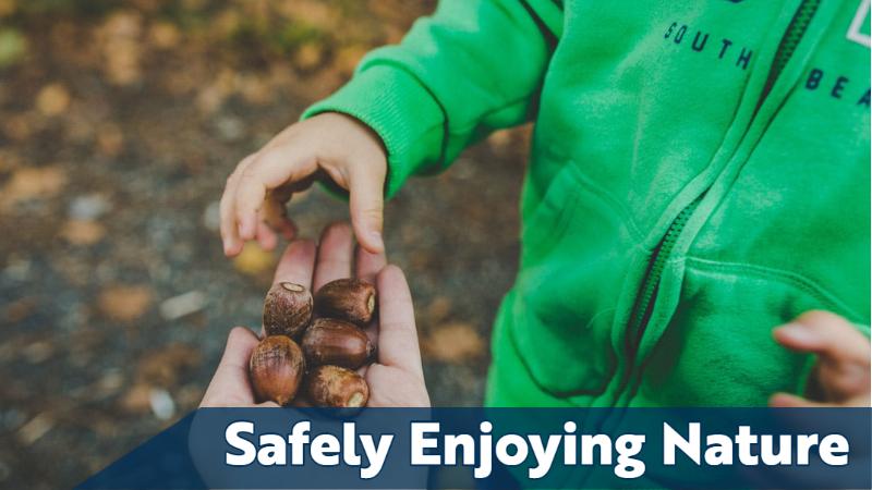 Safely Enjoying Nature
